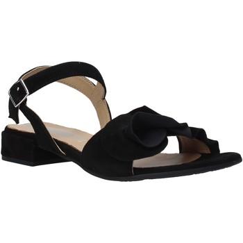 kengät Naiset Sandaalit ja avokkaat IgI&CO 5188400 Musta