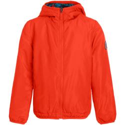 vaatteet Naiset Takit Invicta 4442203/D Oranssi