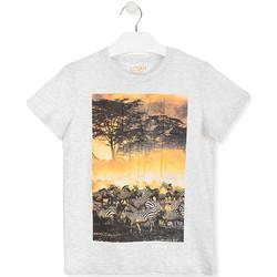 vaatteet Lapset Lyhythihainen t-paita Losan 013-1017AL Valkoinen