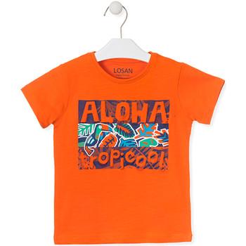 vaatteet Lapset Lyhythihainen t-paita Losan 015-1025AL Oranssi