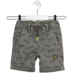 vaatteet Lapset Shortsit / Bermuda-shortsit Losan 015-9006AL Vihreä