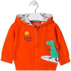 vaatteet Lapset Svetari Losan 017-6026AL Oranssi