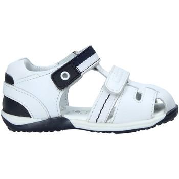 kengät Lapset Urheilusandaalit Chicco 01063471000000 Valkoinen