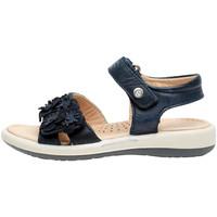 kengät Tytöt Sandaalit ja avokkaat Naturino 0502724 04 Sininen