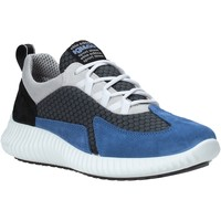 kengät Miehet Matalavartiset tennarit IgI&CO 5123611 Sininen