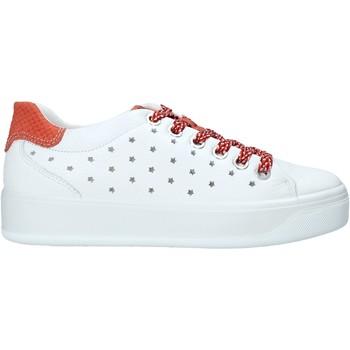 kengät Naiset Matalavartiset tennarit IgI&CO 5157322 Valkoinen