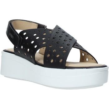 kengät Naiset Sandaalit ja avokkaat Impronte IL01525A Musta