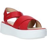 kengät Naiset Sandaalit ja avokkaat Impronte IL01526A Punainen