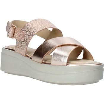 kengät Naiset Sandaalit ja avokkaat Impronte IL01548A Musta