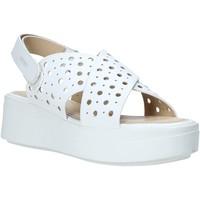 kengät Naiset Sandaalit ja avokkaat Impronte IL01525A Valkoinen