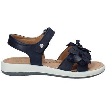 kengät Lapset Sandaalit ja avokkaat Naturino 0502549-02-0C02 Sininen
