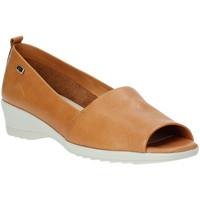 kengät Naiset Balleriinat Valleverde 41141 Ruskea