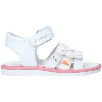kengät Lapset Sandaalit ja avokkaat Primigi 5368700 Valkoinen
