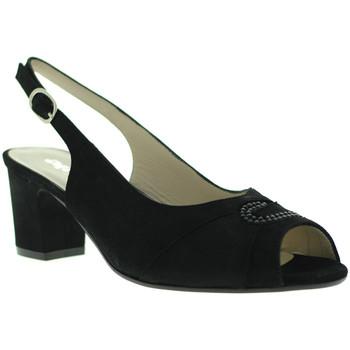 kengät Naiset Sandaalit ja avokkaat Melluso S615 Musta