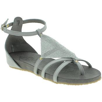 kengät Naiset Sandaalit ja avokkaat 18+ 6108 Harmaa