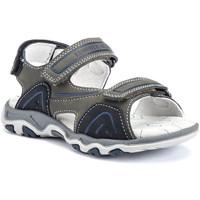 kengät Lapset Sandaalit ja avokkaat Lumberjack SB07606 022 S01 Vihreä