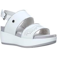 kengät Naiset Sandaalit ja avokkaat Lumberjack SW27006 010 B56 Valkoinen