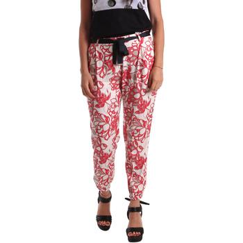 vaatteet Naiset Chino-housut / Porkkanahousut Café Noir JP244 Punainen