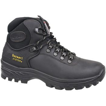 kengät Miehet Vaelluskengät Grisport 10242D26G Brown