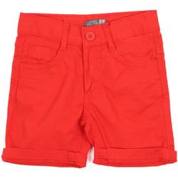 vaatteet Lapset Shortsit / Bermuda-shortsit Losan 015-9655AL Punainen