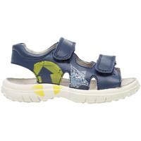 kengät Lapset Sandaalit ja avokkaat Naturino 0502735 01 Sininen