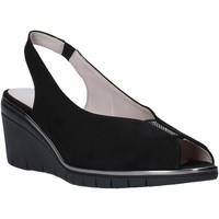 kengät Naiset Sandaalit ja avokkaat Comart 4D3415 Musta