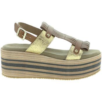 kengät Naiset Sandaalit ja avokkaat Pregunta IBH15804 Ruskea