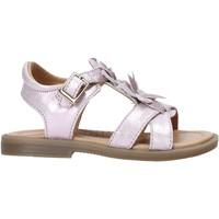 kengät Tytöt Sandaalit ja avokkaat Grunland PS0062 Vaaleanpunainen