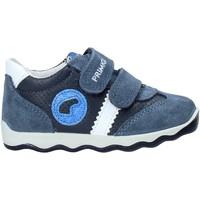 kengät Lapset Matalavartiset tennarit Primigi 5352922 Sininen