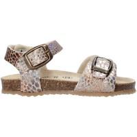 kengät Tytöt Sandaalit ja avokkaat Grunland SB1553 Beige