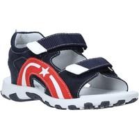 kengät Lapset Sandaalit ja avokkaat NeroGiardini E033860M Sininen