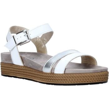 kengät Naiset Sandaalit ja avokkaat IgI&CO 5173200 Valkoinen