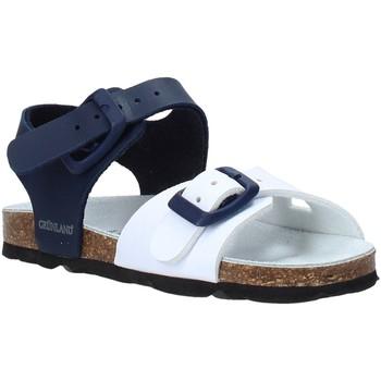 kengät Lapset Sandaalit ja avokkaat Grunland SB0027 Sininen