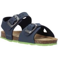 kengät Lapset Sandaalit ja avokkaat Grunland SB0413 Sininen