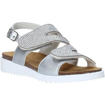 kengät Tytöt Sandaalit ja avokkaat Grunland SB1559 Hopea