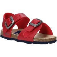 kengät Lapset Sandaalit ja avokkaat Grunland SB1534 Punainen