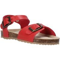 kengät Lapset Sandaalit ja avokkaat Grunland SB1551 Punainen