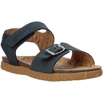kengät Lapset Sandaalit ja avokkaat Grunland SB1565 Sininen
