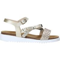 kengät Tytöt Sandaalit ja avokkaat Grunland SB1317 Muut