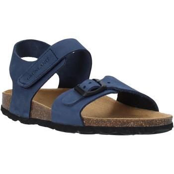 kengät Lapset Sandaalit ja avokkaat Grunland SB0236 Sininen