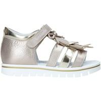 kengät Tytöt Sandaalit ja avokkaat NeroGiardini E021480F Muut