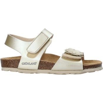 kengät Tytöt Sandaalit ja avokkaat Grunland SB1250 Muut