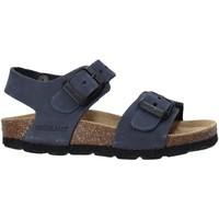 kengät Lapset Sandaalit ja avokkaat Grunland SB0205 Sininen