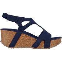 kengät Naiset Sandaalit ja avokkaat Docksteps DSE106243 Sininen