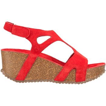 kengät Naiset Sandaalit ja avokkaat Docksteps DSE106246 Punainen