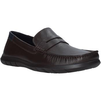 kengät Miehet Mokkasiinit Impronte IM01080A Ruskea