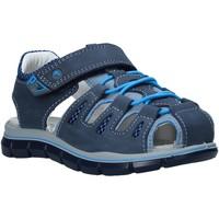 kengät Lapset Sandaalit ja avokkaat Primigi 5392711 Sininen