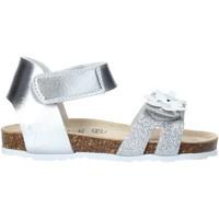 kengät Tytöt Sandaalit ja avokkaat Grunland SB1545 Hopea