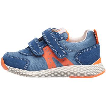 kengät Lapset Matalavartiset tennarit Naturino 2014902 01 Sininen