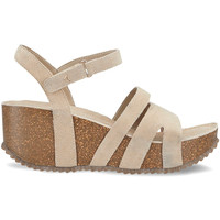 kengät Naiset Sandaalit ja avokkaat Docksteps DSE106442 Beige